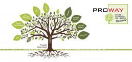 Technologie-Natur-Proway-Zukunftswald
